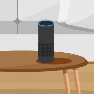 Amazon Echo - IoT Device